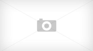 Договор аренды транспортного средства (экипаж отсутствует) — образец