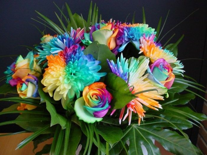 1321549756_neobychnye-cvety