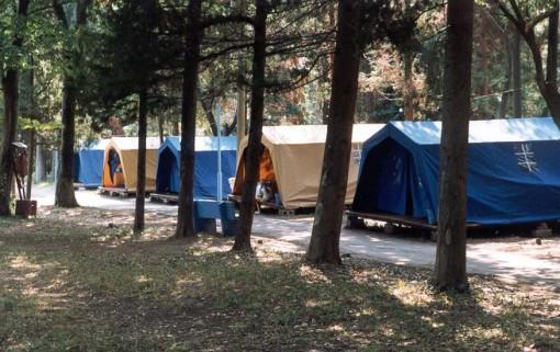 В Приморье начали выявлять несанкционированные летние лагеря