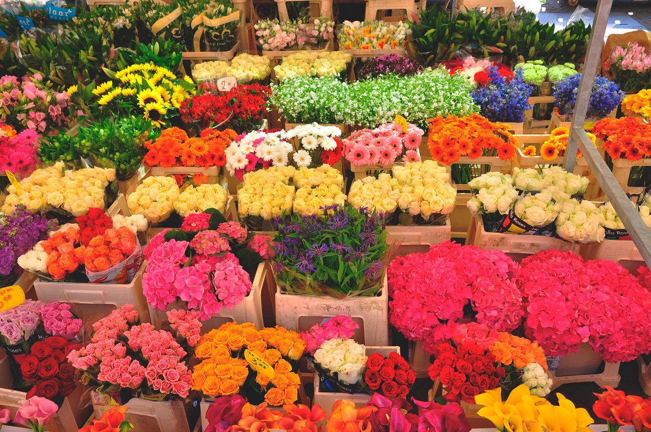 Фото цветов дляшопа