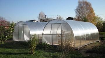 Строительство теплиц и выращивание овощей, рассады в теплицах