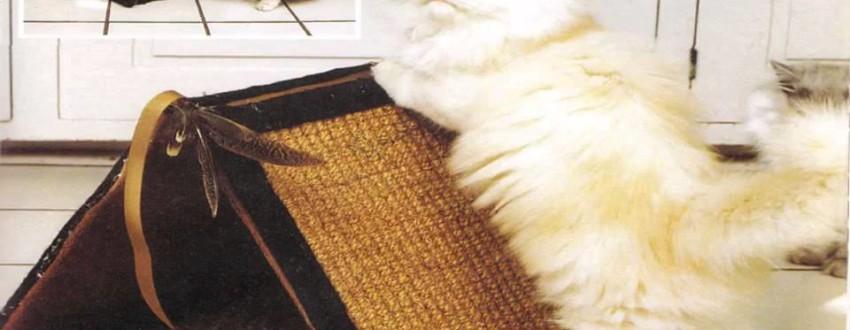 Бизнес идеи – Производство и продажа домов для собак и кошек