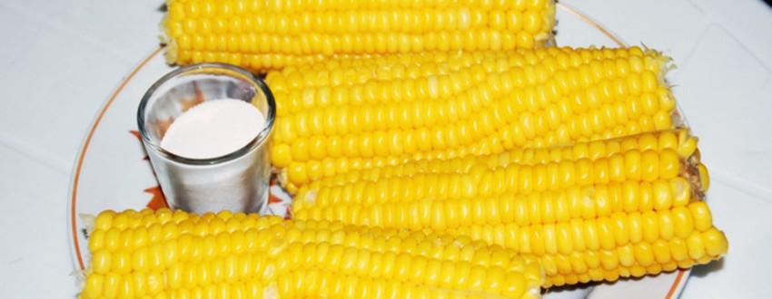 Продажа вареной кукурузы круглый год!!!  Новый выгодный бизнес в сфере фаст-фуда
