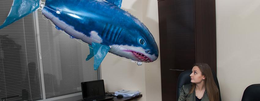 Игрушка «летающая рыба» или «летающая акула»