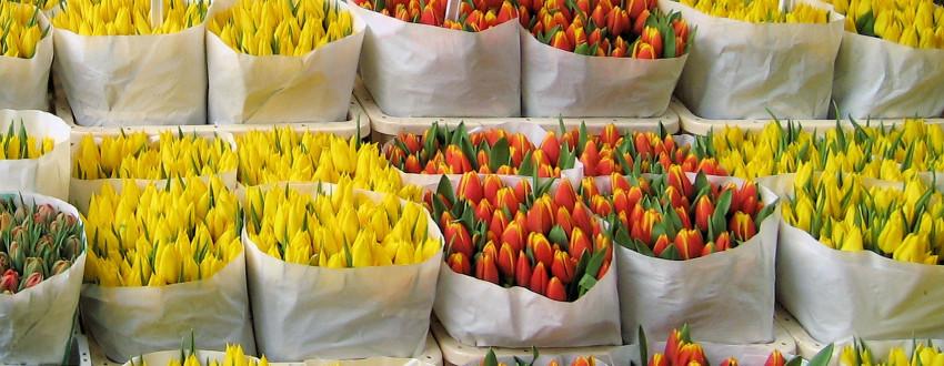 Цветы на рынке