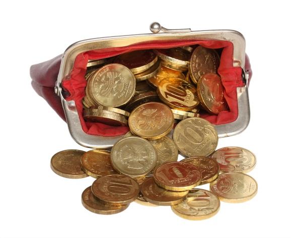 Уплата страховых взносов ИП — монеты