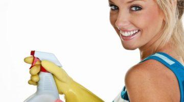 Частный бизнес на чистоте — открываем клининговую компанию